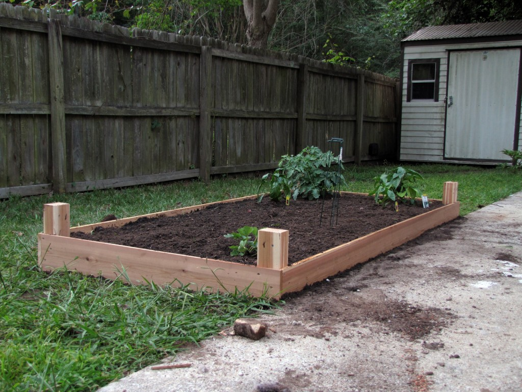 ceder raised bed for vegetable garden